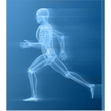 Total Orthopedics: PT for the Hoboken Professional